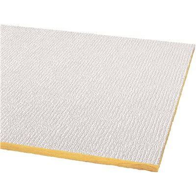 ARMSTRONG® ACOUSTICAL CEILING PANEL 2906 SHASTA PERFORATED HUMIGUARD PLUS  LAY IN, 24X48X5/8