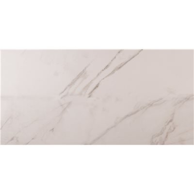 1f76c365a9d6d1 MSI Carrara 12 in. x 24 in. Polished Porcelain Floor and Wall Tile (16 sq.  ft.   case)