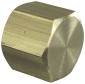 Sioux Chief 3/8 in. Lead-Free Brass FPT Cap